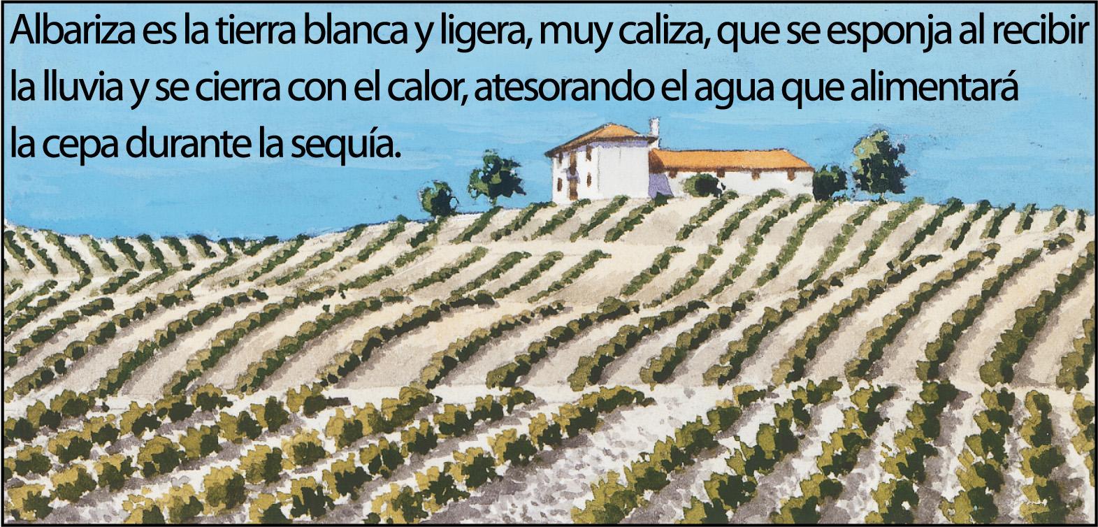 vino-jerez2-1500px
