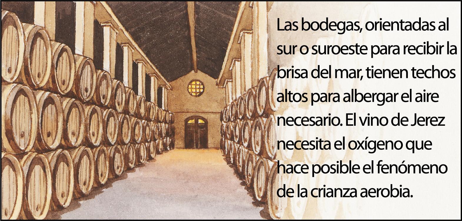 vino-jerez5-1500px