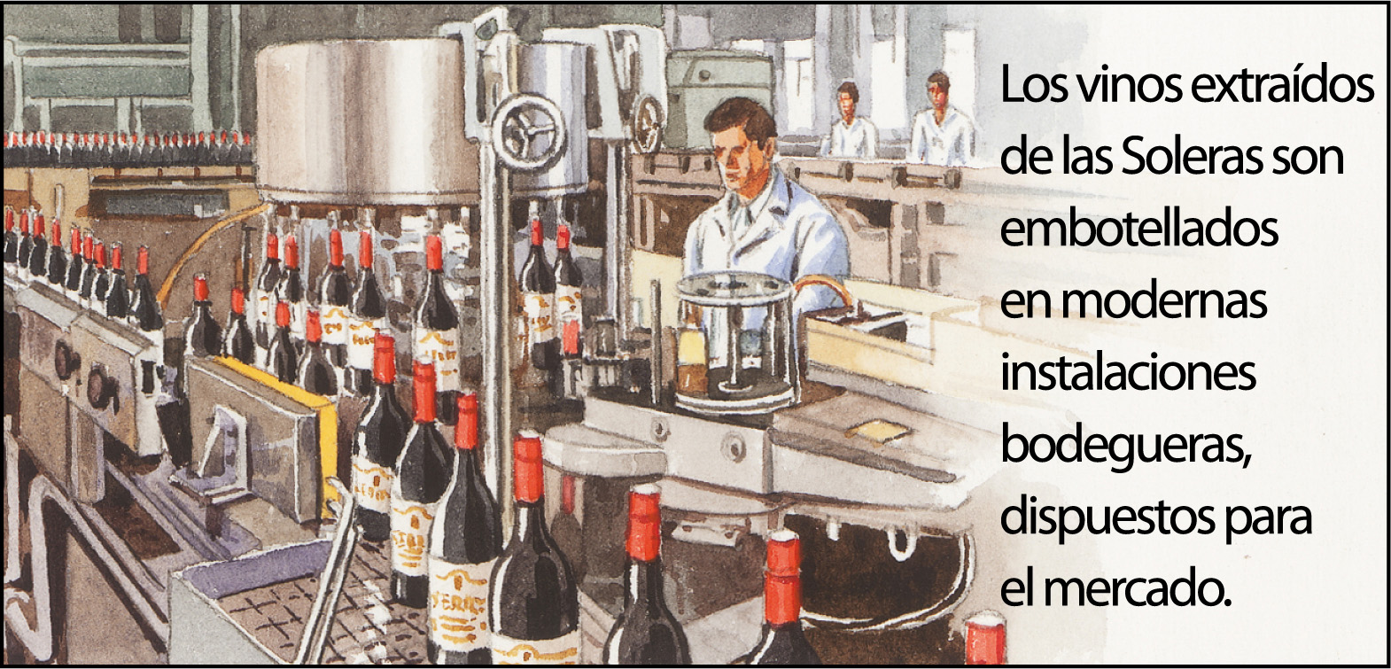 vino-jerez9-1500px